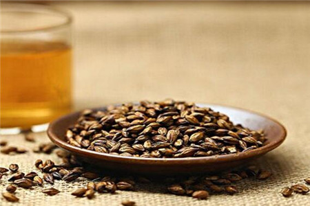 平时常喝大麦茶的功效与作用